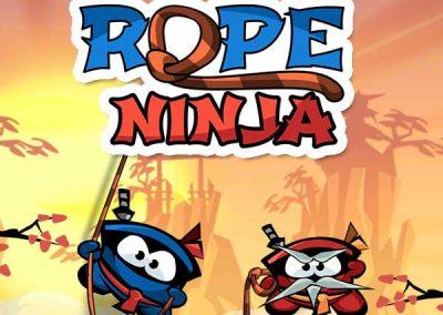 Rope Ninja 12 cover